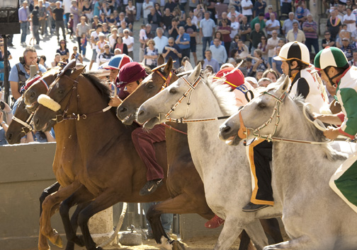 A scene from the Palio, July 2013