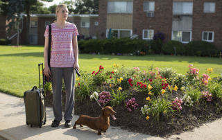 Greta Gerwig in Wiener-Dog (Amazon Studios/IFC Films)